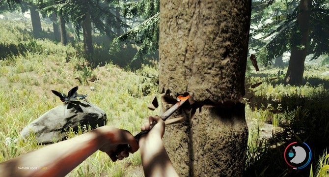 The 10 Best Survival Games